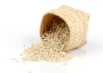 Malt Extract… A Loaded Mash