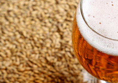 Malt…The Processed Barley