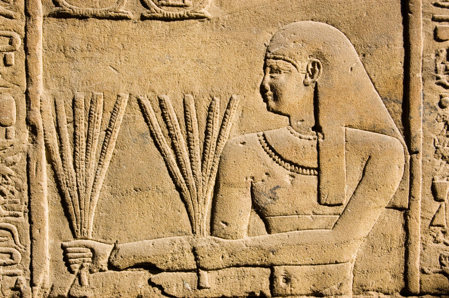 Ancient Egyptian stone carving of a priest carrying stalks of wheat.  Temple of Horus, Edfu, Egypt.