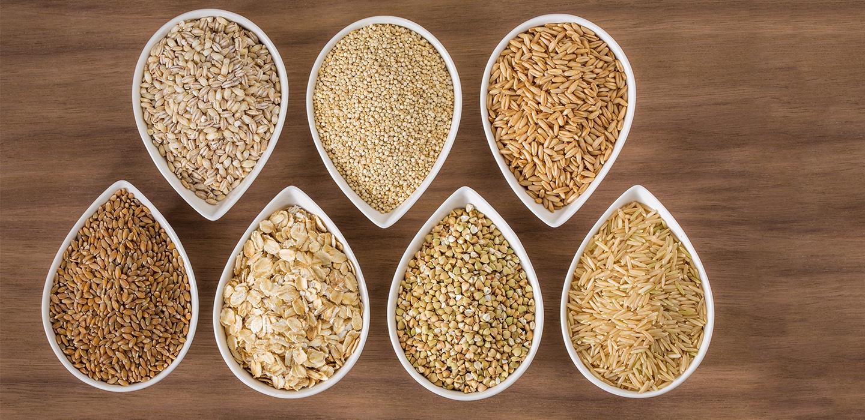 Barley8